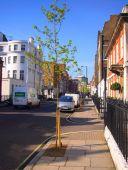 Devonshire St in Marylebone