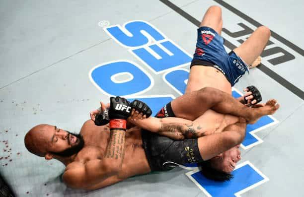 UFC 216 Review