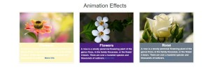 Bootstrap Background Animation Effect