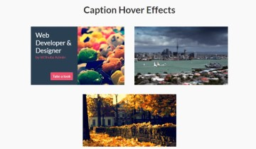 Caption Hover Effects In Bootstrap 4