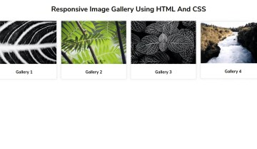 Responsive Image Gallery Using HTML And CSS