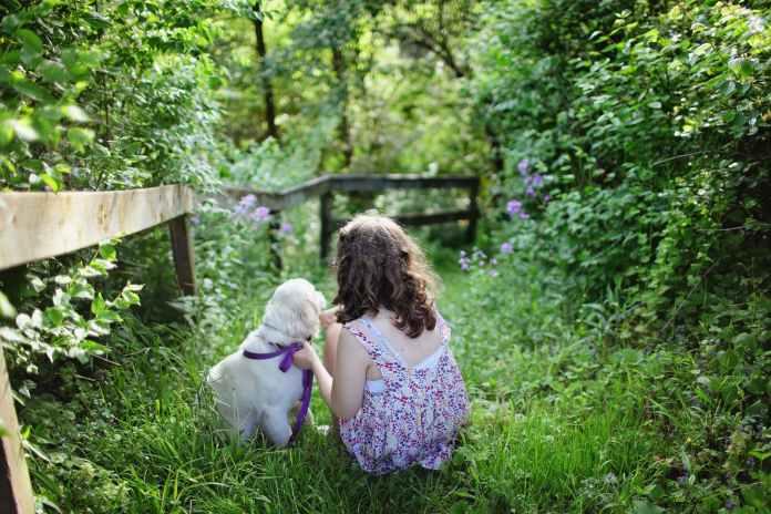被父母 信任 的孩子,心中有梦想,眼里有阳光