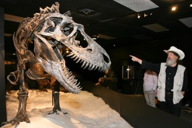 HMNS Dinosaur Mummy CSI