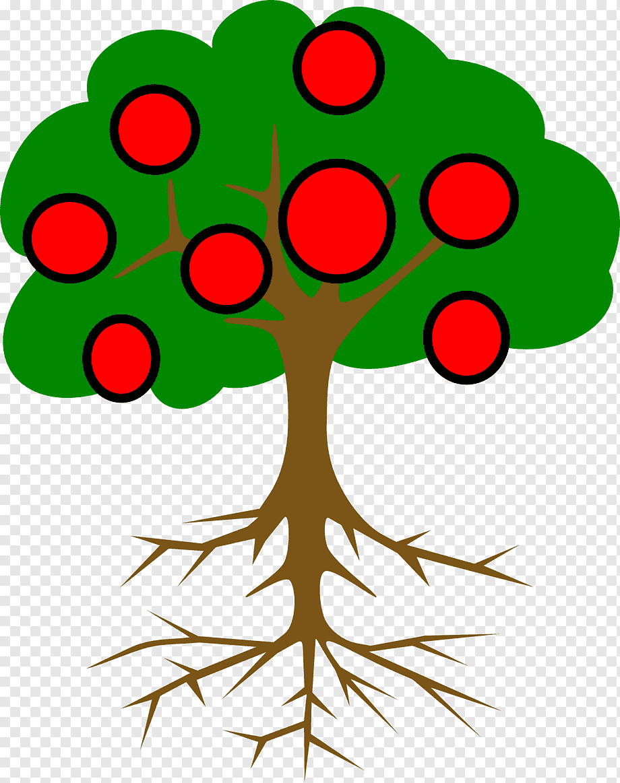 Sketsa Pohon Apel Info Wisata Hits