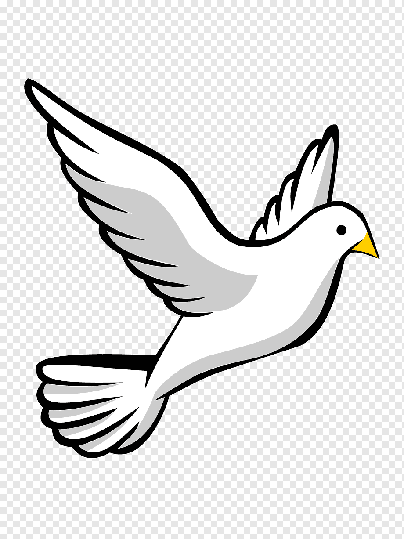 Simbol Merpati Putih : simbol, merpati, putih, Columbidae, Merpati, Sebagai, Simbol,, Siluet,, Putih,, Cabang,, PNGWing