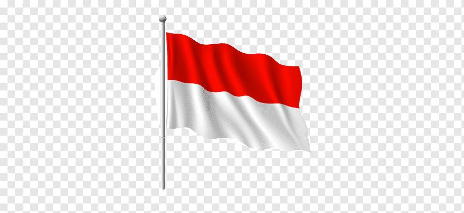 Berikut ini akan kami sajikan beberapa peta negara indonesia png merah putih dan peta hitam putih. Bendera Indonesia Merah Putih Indonesia Png Pngwing