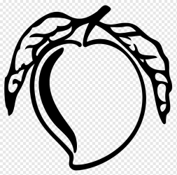 Mango Black and white Drawing mango love white leaf png PNGWing