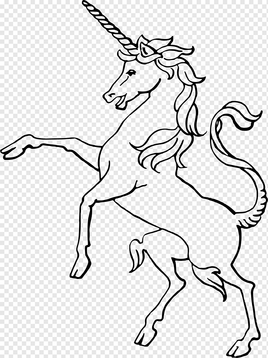 Gambar Unicorn Hitam Putih : gambar, unicorn, hitam, putih, Winged, Unicorn, Drawing,, Unicorn,, Horse,, White,, Monochrome, PNGWing
