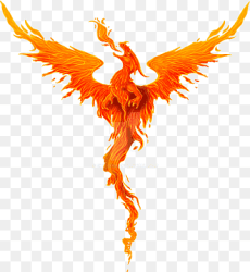 Dragon Digital art Drawing Phoenix legendary Creature orange computer Wallpaper png PNGWing
