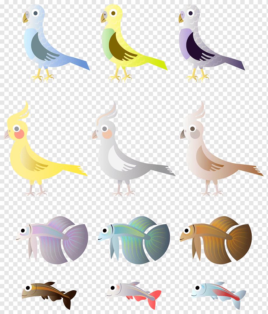 Bird Drawing Parrot Simple Bird Animals Fauna Desktop Wallpaper Png Pngwing