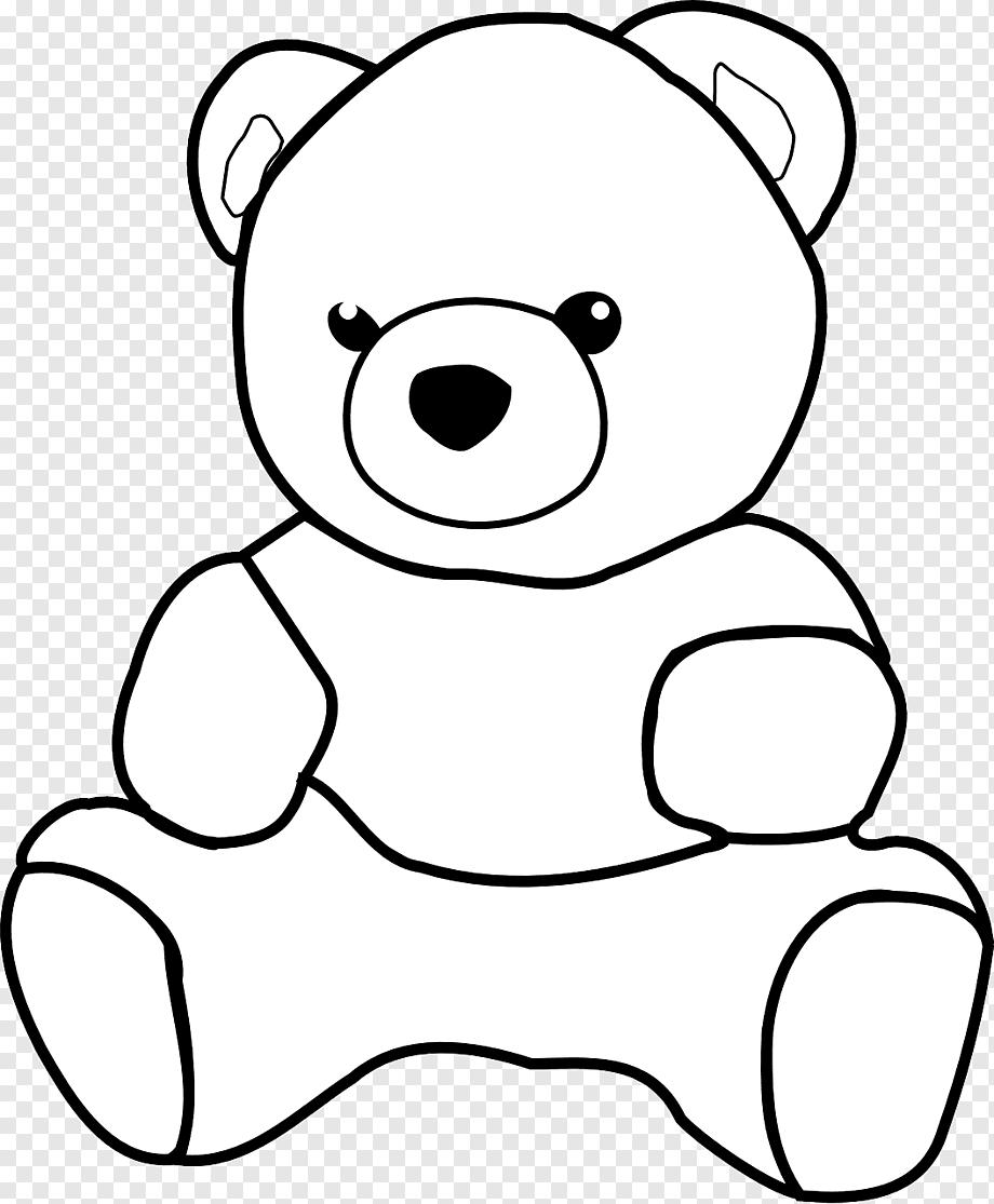 Gambar Mewarnai Boneka : gambar, mewarnai, boneka, Teddy, Giant, Panda, American, Black, Bear,, White,, Animals,, Carnivoran, PNGWing