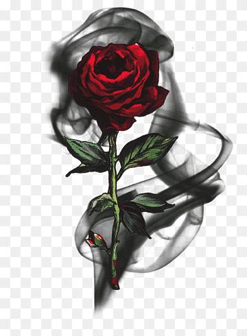 Mawar Logo : mawar, Black, Smoke,, T-shirt, Hoodie, Sleeve, Rose,, Tshirt,, Flower, Arranging,, PNGWing