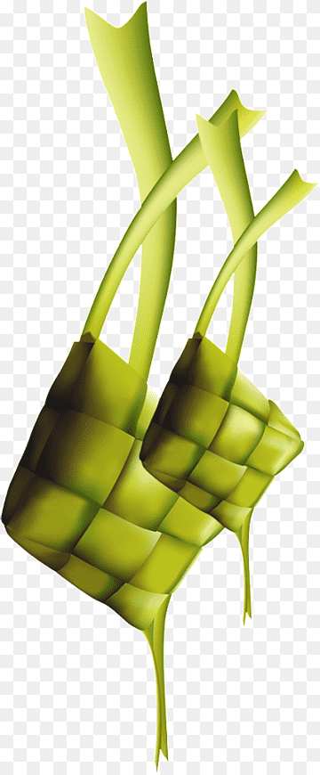 Ketupat Idul Fitri Png : ketupat, fitri, Ketupat, Lebaran, Al-Fitr, Daihatsu, Sigra,, Fitri,, Woven, Green, Yellow, Illustrations,, Plant, Stem,, Vector, PNGWing