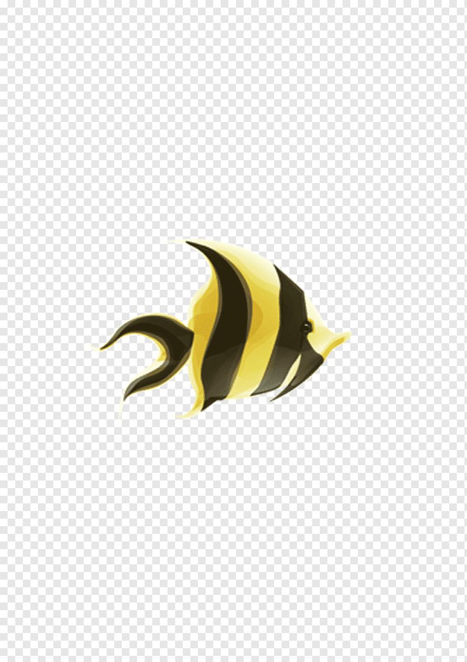 Ikan Hias Png : Yellow, Computer,, Raksasa, Salamander,, Hewan,, Komputer,, Ornamen, Natal, PNGWing