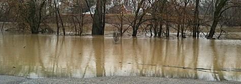 Swinney park flooding