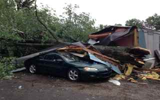 WNDU photo of tree on Winona Lake mobile home