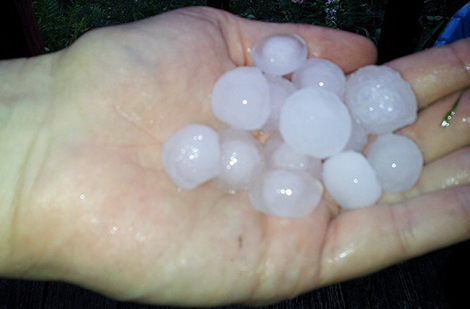 Photo of hail stones in the palm of a hand