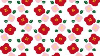 ラフな椿の花の包装紙