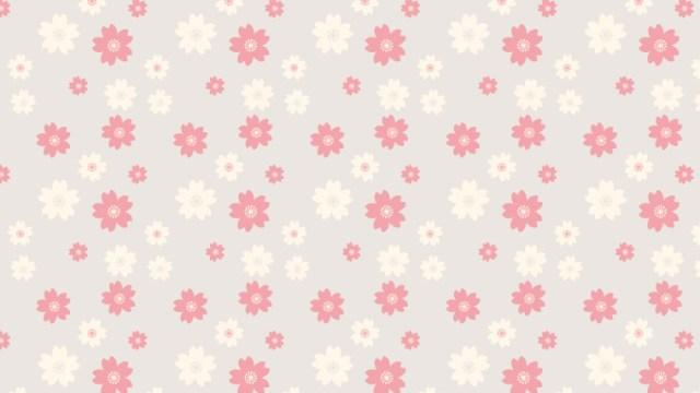 カジュアルスタンダードな桜柄の包装紙