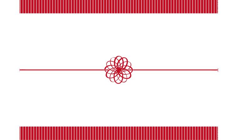 シンプルな水引スタイルののし紙