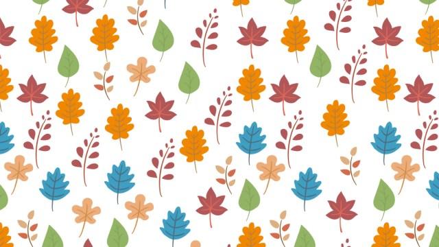 秋色カラフル落ち葉の包装紙