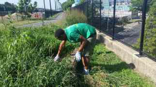 Weeding on the Metropolitan Branch Trail