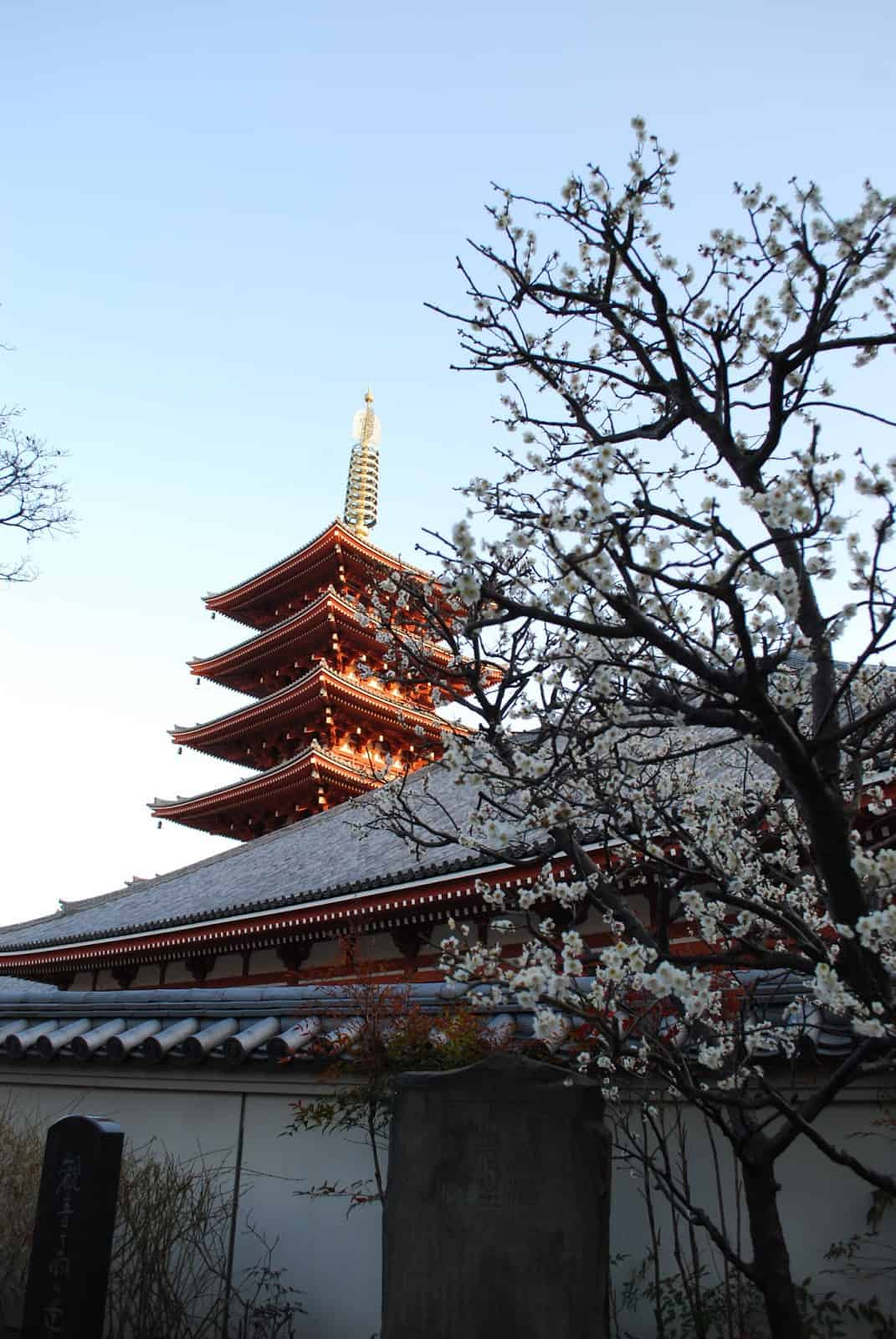 Sensoji Temple is one of Tokyo's oldest temple