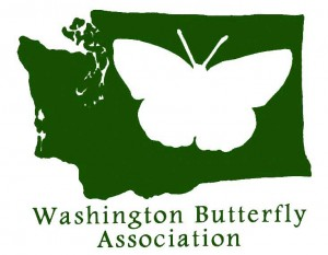 Washington Butterfly Association Logo
