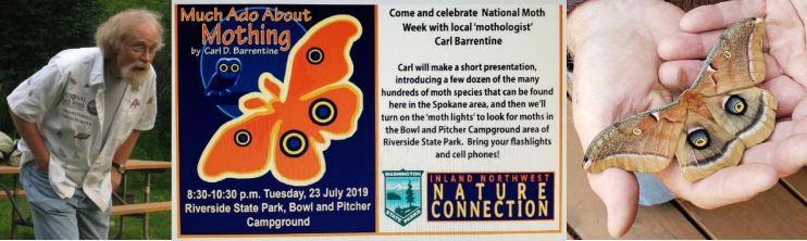 Carl Barrentine Much Ado About Mothing