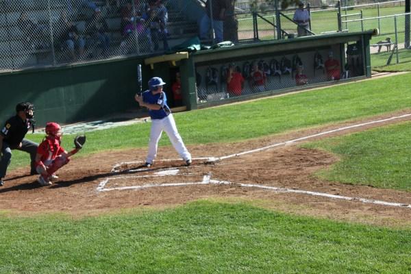 Laramie -stars Win Stay Alive State Tournament