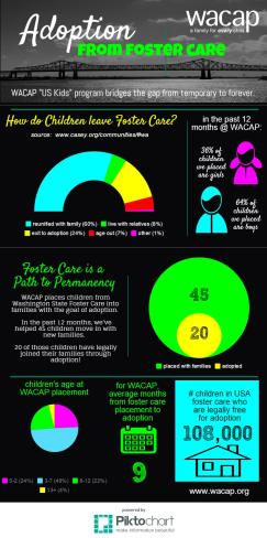 Adoption From Foster Care (WACAP)