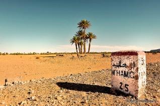 M'hamid, Marokko, Foto/Copyright: Rolf G. Wackenberg