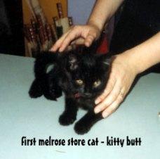 kitty butt