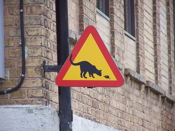 17 funniest road signs ever 12 17 Funniest Warning Giving Signs Ever Found