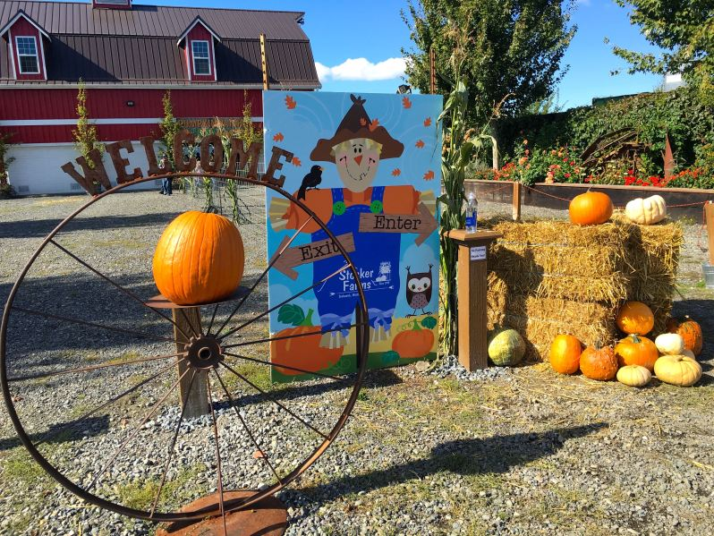 2016_Snohomish County Pumpkinfest
