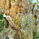 """""""Image 107: Hillhouse reading Kincaid's Lucy"""" from The Art of Mali Olatunji: Painterly Photography from Antigua and Barbuda by Mali Olatunji and Paget Henry."""