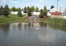 Fountains on the pond