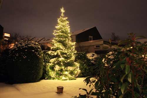 Ein Weihnachtliches Bild von Rolf Krenn.