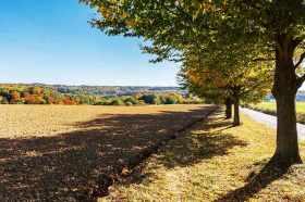 Herbst-Schuirweg
