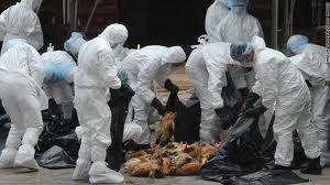 تحذيرات من الحروب البيولوجية السرية و تخليق الفيروسات والجراثيم والامراض(بيان صحفى)