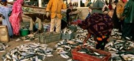 اتفاق الصيد الموريتاني السنغالي:مقايضة الأسماك بالمعارضين/ بقلم:  الشيخ حيدرا
