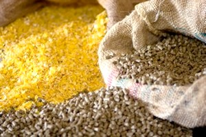 الحكومة الموريتانية تضخ 50.000 طن من الأعلاف في السوق(تفاصيل)