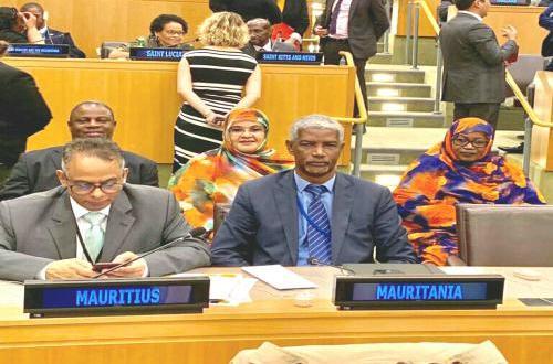 مواطنة موريتانية تنال عضوية هيئة أممية للمرة الثانية