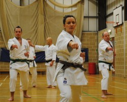2013 - Colchester January weekend course with Sugasawa Sensei.