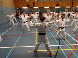 Tim Shaw Sensei teaching Seishan in Holland.