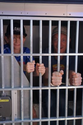 Der Gefängniswagen der Stapo