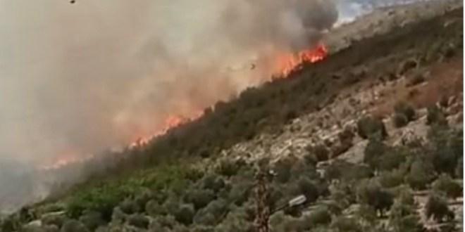 حريق كبير في خراج بلدة المعمارية