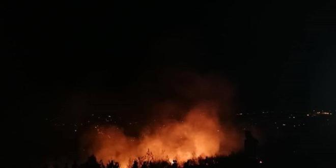السيطرة على حريق احراج داريا