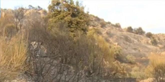 إخماد حريق في محيط محمية جبل موسى وخراج بلدات كسروانية