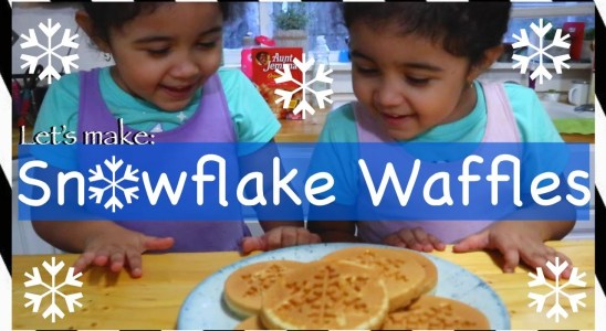 Dash SnowFlake Mini Waffles | Twin Mom Life